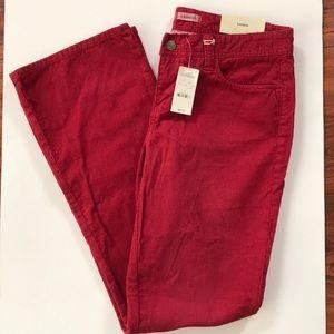 Express red corduroy pants